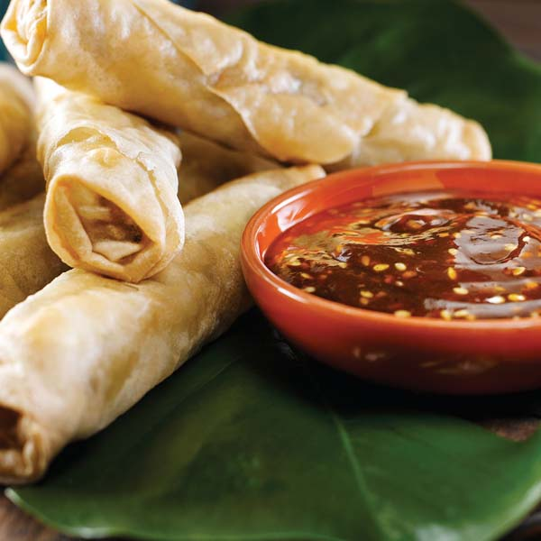 Spring Rolls with Hoisin Dip